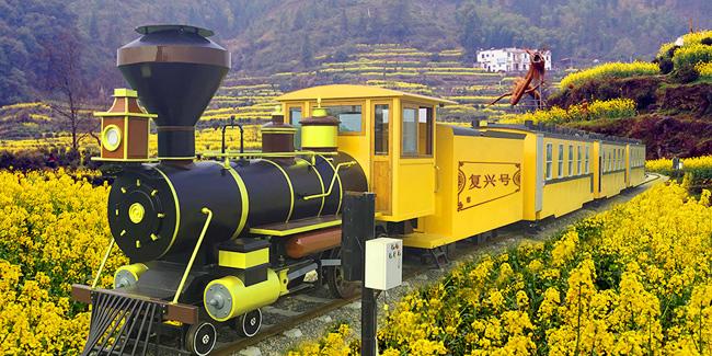 电动观光小火车和燃油观光小火车有哪些优势?
