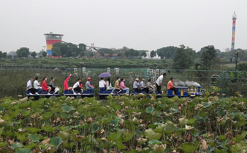 花博汇网红观光小火车(宝石蓝)